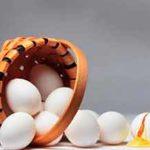 Не кладите яйца в одну корзину, или как копирайтеру заполучить большую базу клиентов